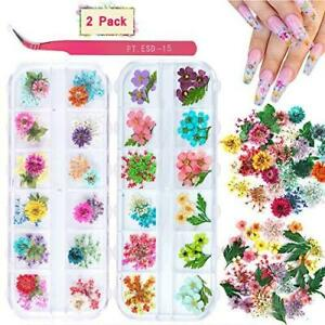 2 Boxes Dried Flowers for Nail Art, KISSBUTY 24 Colors Dry Flowers Mini Real