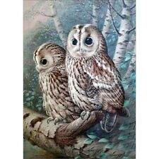 Round 5D Diy Diamond-Painting Cross Stitich White Owl Embroidery Art Souvenir