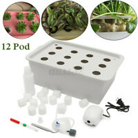 12 Holes Plant Site Hydroponic System Grow Bubble Tub Box Deep Water Culture