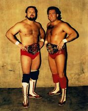 12 Pro Wrestling Dvds: The Best of Arn Anderson And Tully Blanchard!