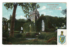 More details for muckross abbey - killarney photo postcard 1905