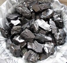 XXL ELITE Shungite Natural raw rough silver noble 150 gr Healing Water - RUSSIA