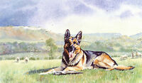 "GERMAN SHEPHERD DOG GSD ALSATIAN FINE ART LIMITED EDITION PRINT - ""Masterful"""