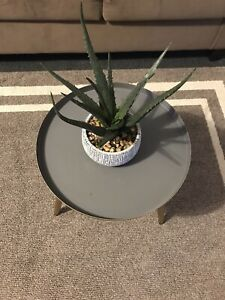 Black Gold Metal Tray Top Round End Table Side Accent Modern Contemporary Glam