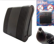 Scaccia piccione piccioni pigeon birds allontana uccelli repellente dissuasore