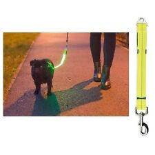 Ancol USB Rechargeable Night Safety Light Hi-Vis Dog Lead / Collar Attachment
