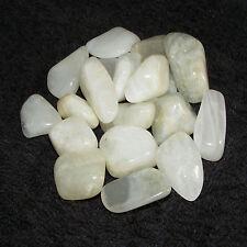 12 x Pastal Moonstone Tumblestones A Grade 14mm-16mm Crystal Gemstone Wholesale
