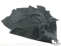 PELGIO Real Genuine Polished Stingray Skin Leather Hide Pelt Scraps 100 g. Black