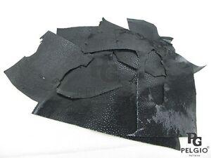 PELGIO Genuine Polished Stingray Skin Leather Hide Scraps 100 g Black Free Ship