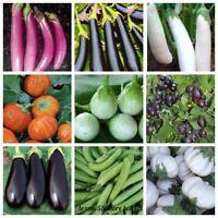 100Pc Eggplant Vegetable Seeds Aubergine Badrijani 20 Kinds Annual Garden Plants
