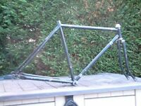 Vintage 1980's Raleigh Junior Double Butted , 19 inch Road Bike Frame