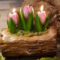"""HOFF Interieur Teelichter /""""Tulpen/"""" 6er Set Wachs 6cm rot 8062 Kerzen Deko"""