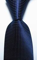 New Classic Checks Dark Blue White JACQUARD WOVEN 100% Silk Men's Tie Necktie