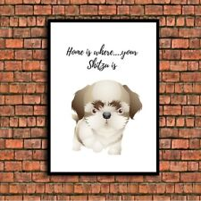 home is where your SHITZU DOG is a4 gloss Print UNFRAMED picture 3