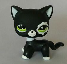 littlest pet shop LPS611 figure Black Rare Short Hair  Cat  with blue eyes