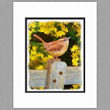 Carolina Wren Wild Bird Original Art Print 8x10 Matted to 11x14
