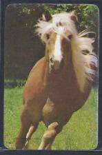 #920.459 Blank Back Swap Cards -MINT- Running palomino horse