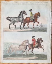 Bertuch Handcolored Print Horse Denmark & Friesland  - 1790/