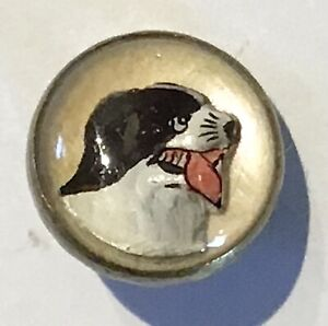 GORGEOUS ANTIQUE GLASS IN METAL DOG ST. BERNARD, ANIMAL LIFE PICTORIAL BUTTON