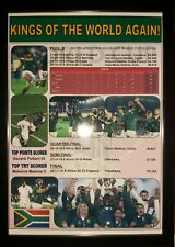 More details for south africa 2019 rugby world cup winners - framed print