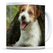 Jack Russell Terrier - Drinks Mug Cup Kitchen Birthday Office Fun Gift #16304