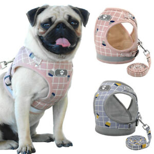 Escape Proof Dog Harness & Lead Set Chihuahua Pug Breathable Mesh Walking Vest