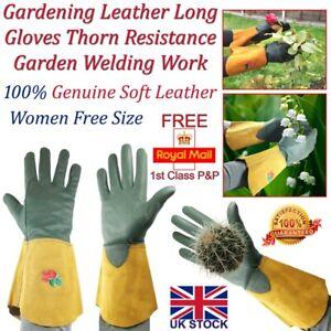 LTG Ladies Gardening Leather Long Gloves Thorn Resistance Work Garden Safety DIY