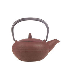 IWACHU Tetsubin Japanese Style Cast Iron Kettle Tea Pot With Strainer Fireplace
