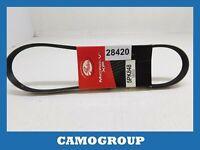 Belt Service V-Ribbed Belt Gates Fiat Ritmo Lancia Prism PEUGEOT 605 5PK848