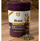 Reach Joint Equine Supplement 2.815 Pounds Horse Pellets Glucosamine MSM