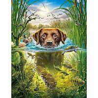 5D Full Drill Diamond Painting Embroidery Swimming Dog Cross Stitch Kits Art AU