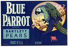 BLUE PARROT Vintage Pear Crate Label, **An Original Fruit Crate Label**, 576
