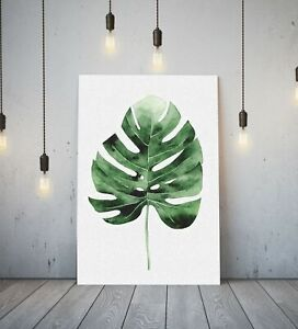 MONSTERA LEAF 4 -DEEP FRAMED CANVAS ANIME WALL ART PICTURE PAPER PRINT- GREEN