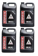 Pro Honda GN4 10W-30 4-Stroke Engine Motor Oil 4 Gallons OEM 08C35-A131L02