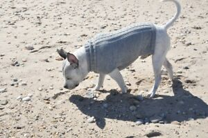 """Alpaca Wool Hand made """"Cable"""" Dog Sweater winter warm Jacket"""