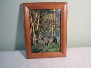 Bull Elephant Volcano Framed Color Photo Picture Print - National Geographic