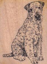 "lakeland terrier stamp cabana Wood Mounted Rubber Stamp 2 x 3"" Free Shipping"