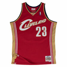 LeBron James Cleveland Cavaliers Mitchell & Ness Swingman Jersey Red L