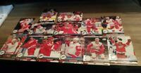 2017-18 UPPER DECK UD SERIES 1 & SERIES 2 DETROIT REDWINGS TEAM SET (13 cards)