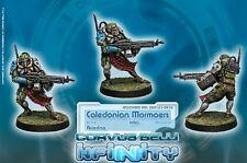 Infinity BNIB Ariadna-Caledonian mormaer (ap HMG)