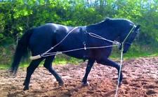 NEW HARDY'S HORSE/COB/PONY PESSOA TYPE TRAINING AID RIDERS  BEST CHOICE WHITE