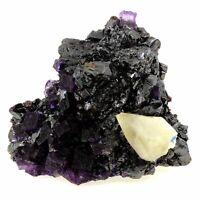 Fluorit+Sphalerit+Calcit. 5509.0 Ct. Elmwood Mine,Carthage,Tennessee