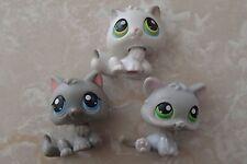 Littlest Pet Shop RARE BABY Kitten Grey Gray White 100 88 66 LOT