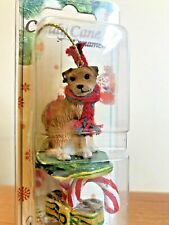 Border Terrier Christmas Ornament Tan And White Dog Candy Cane New