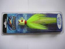 Esche e mosche verde per la pesca in acqua salata