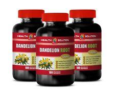 digestion wellness - DANDELION ROOT - dandelion greens seeds 3B