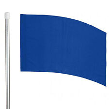6' Silver Pole and Color Guard Flag Package