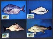 Ciskei 70/3 Maximumkarten Fische u.a. Pachymetopon
