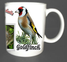 GOLDFINCH GARDEN BIRD MUG LIMITED EDITION XMAS GIFT NEW DESIGN, INC NEST, EGG *