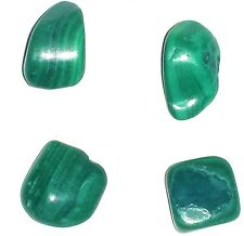 51ct/10.2g 4x Green Malachite Polished Loose Gemstone Pieces
